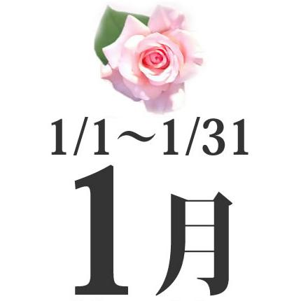 1月生まれの誕生日相性占い