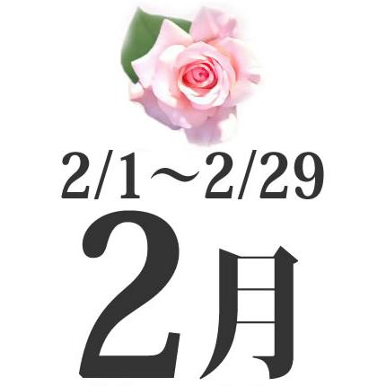 2月生まれの誕生日相性占い