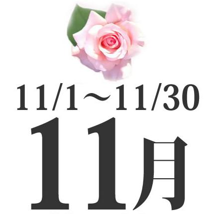 11月生まれの誕生日相性占い